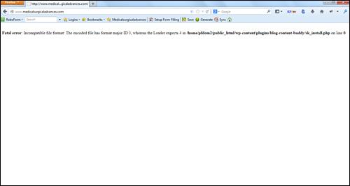 WordPress Fatal error message