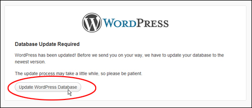 WordPress Database Update Required