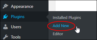 WordPress Plugins Menu > Add New
